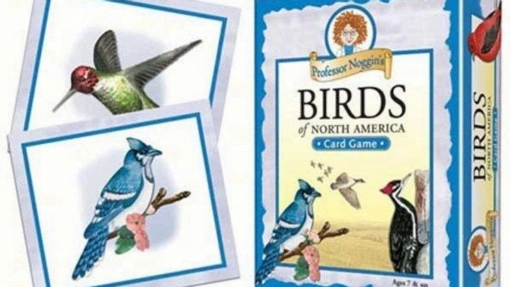 Professor Noggins Bird Game