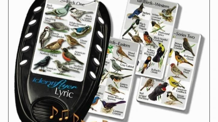 The IdentiFlyer Lyric with 2 SongCards - 40 backyard birds