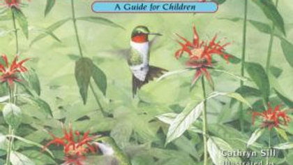 About Hummingbirds Curriculum