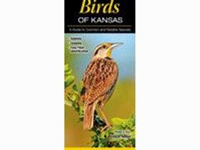 Birds of Kansas Foldout