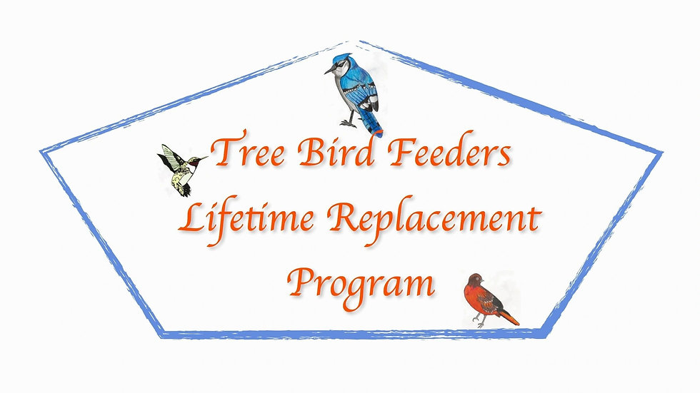 Tree Bird Feeder Life Time Feeder Return Restocking Fee