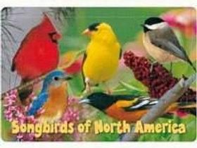 Kids Puzzle Songbirds 40 piece Puzzle