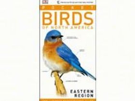 Pocket Birds of North America Eastern Region