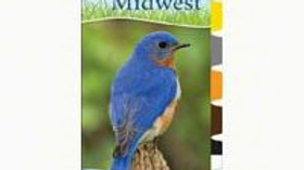 Birds of Midwest Quick Adventure Guide