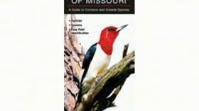 Birds of Missouri Laminated Fold Out