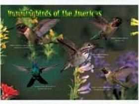 Kids Puzzle Hummingbirds 40 piece Puzzle