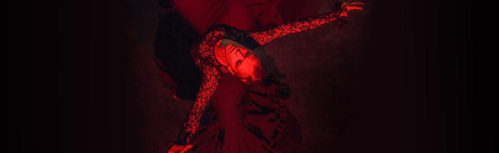 Carmen - banner 11.jpg