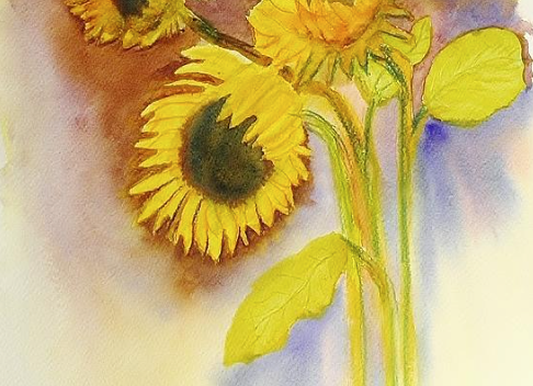 My Sunflowers - Digital Fine Art Prints