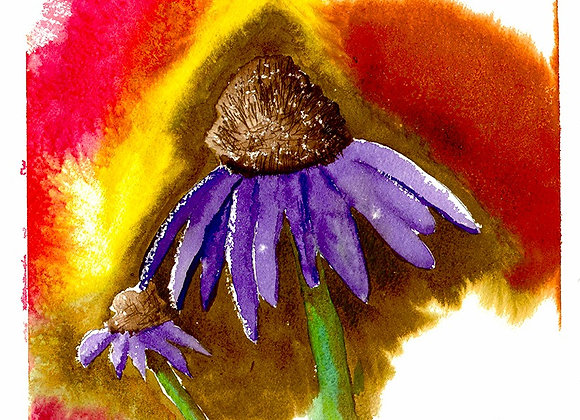 Cone Flower - Giclee' Fine Art Print on Canvas