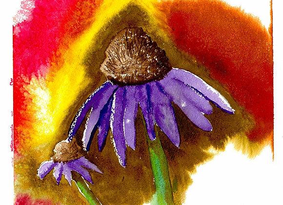 Cone Flower - Digital Fine Art Prints