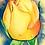 Thumbnail: The Rose - Prints on Plak Panels (No Framing Necessary)