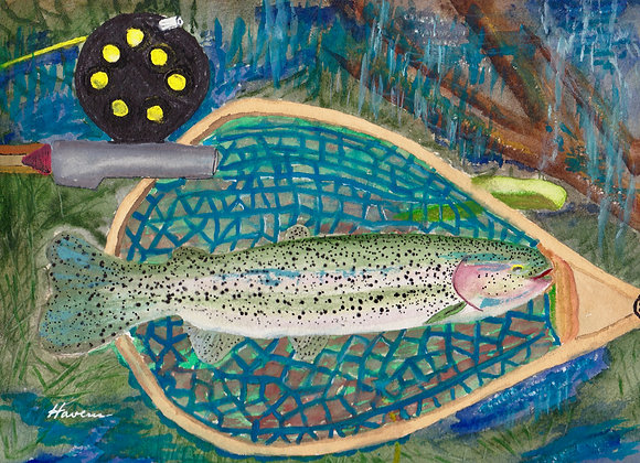 Rainbow Trout in the Net - Prints on Plak Panels (No Framing Necessary)