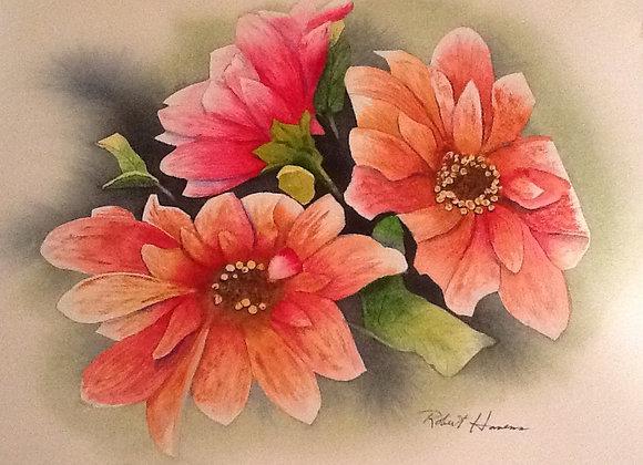 Poknees - Digital Fine Art Prints