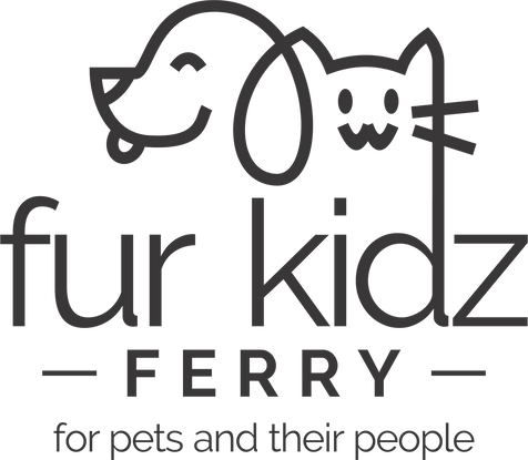 Catherine Bredin ; Cat Bredin ; FurKidzFerry ; Fur Kidz Ferry ; Dog ; Cat ; Dogs ;  Cats ; Pet ; Pets ; Transport ; Taxi ; Ferry ; Driver ; Snapdragon Pictures ; Leanne Williams ; Johannesburg ; Sandton ; South Africa ; Courier