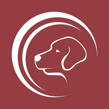 Labrador Rescue SA Profile.jpg