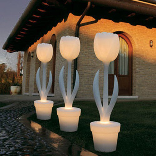 tulip-xl-lumineuse-ambiance-exterieur