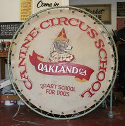 Canine Circus School