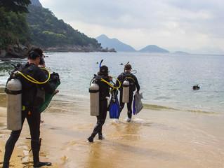 Project Aware transforma telefone em ferramenta de proteção marinha