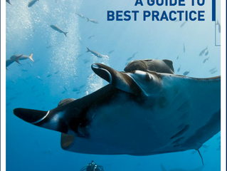 Guia de Boas práticas para o turismo com tubarões e raias