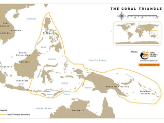 O Triângulo dos Corais