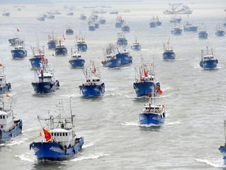 Centenas de navios pesqueiros ameaçam Galápagos