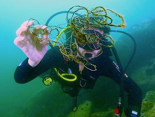 Mutirão subaquático de outubro na Praia Vermelha