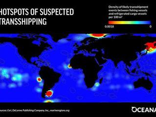 Oceana apresenta relatório que expõe milhares de navios suspeitos de atividades ilegais no mar