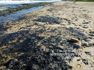 O desastre do óleo na costa brasileira