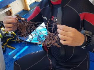 Ciência Cidadã - Resíduos na Ilha de Âncora em Búzios/RJ