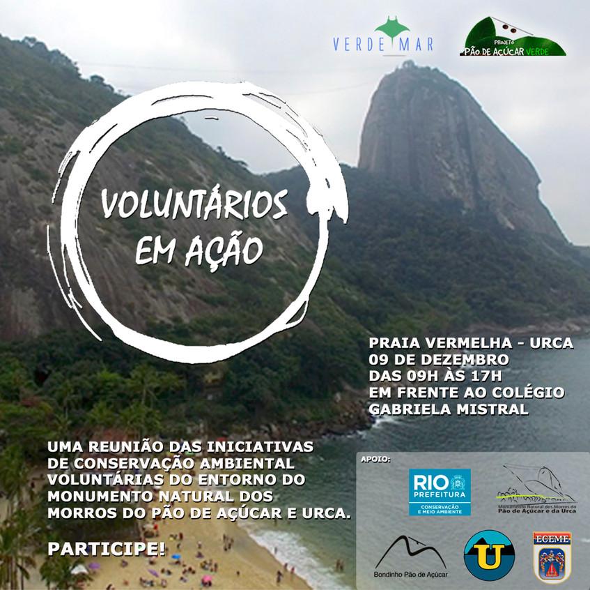 voluntarios em ação_ig