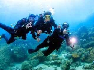 ICMBio define regras para mergulho em Unidades de Conservação