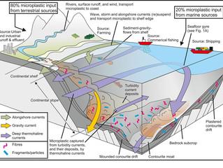Quantidade recorde de microplástico encontrado no fundo oceânico