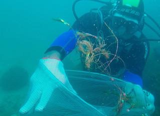 Estudo revela diferenças entre lixo encontrado nas praias e no fundo do mar
