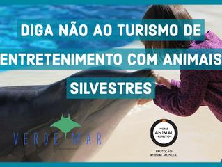 Verde Mar integra iniciativa pelo fim do turismo de entretenimento com animais silvestres