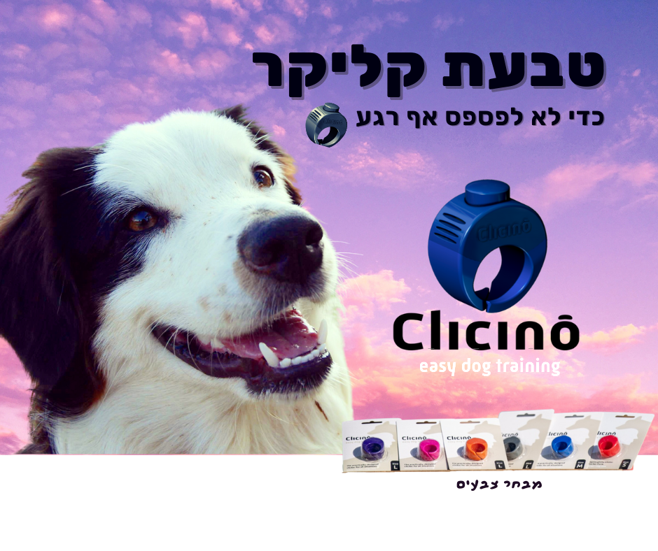 Facebook ad Clicino.png