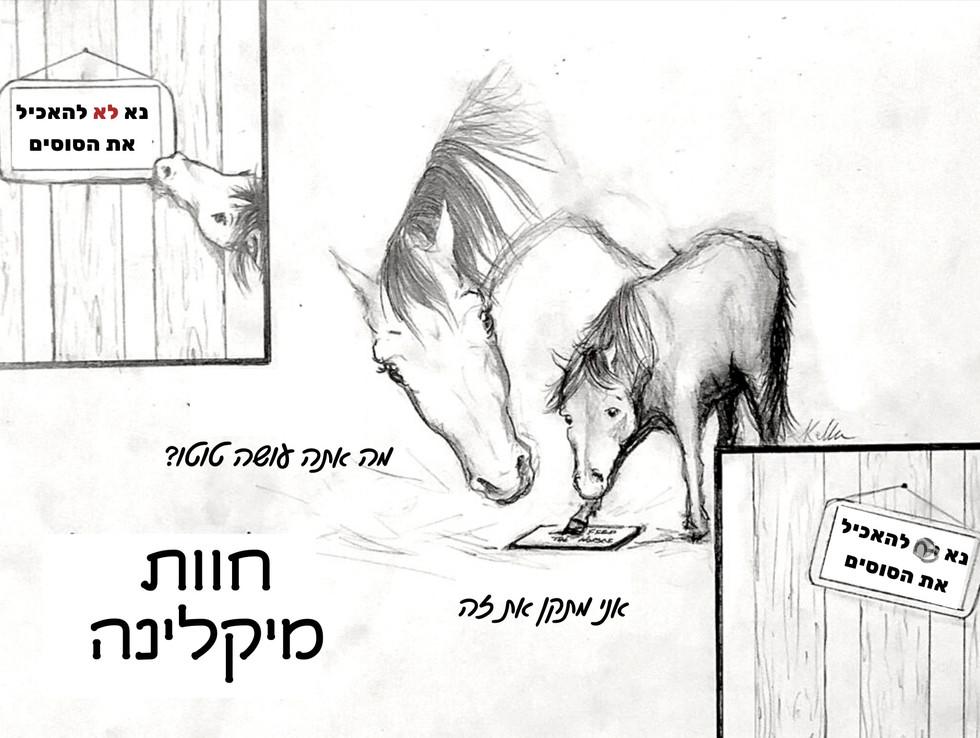 נא לא להאכיל את הסוסים