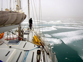 Guys Bight-sea ice.jpg