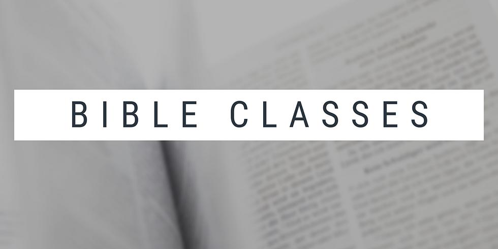 Sunday Bible Classes