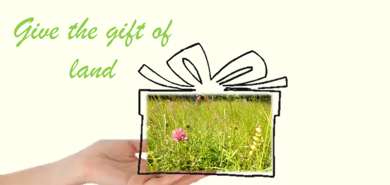 Give the Gift of Land