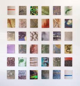 Photography Glazed Tiles