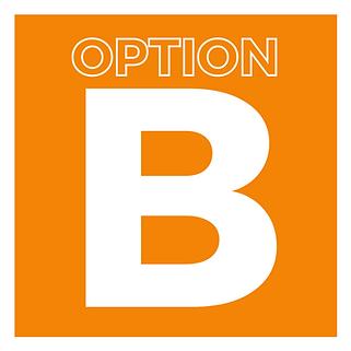 OptionB DSI.png