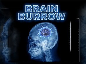 Bianca Crespo's 'Psycho in Psychology' for Brain Burrow on The Lineup!