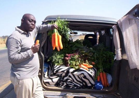 WHCI Zambia 2010 1.JPG
