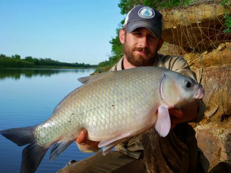 Southern Comfort:  Buffalo Fish