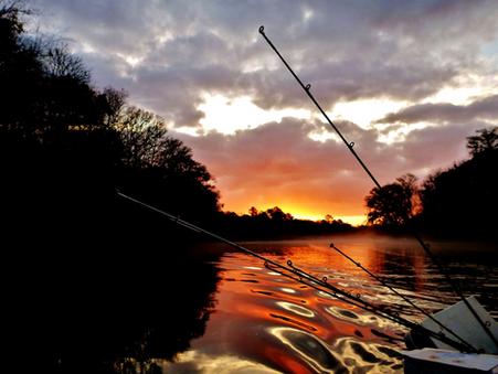 ROUGH FISHERY PROFILES: PEE DEE RIVER, SOUTH CAROLINA