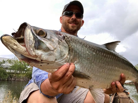 The Tamiami Trail:  The Fishing Spectrum of the Everglades