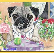 Pug w Treats