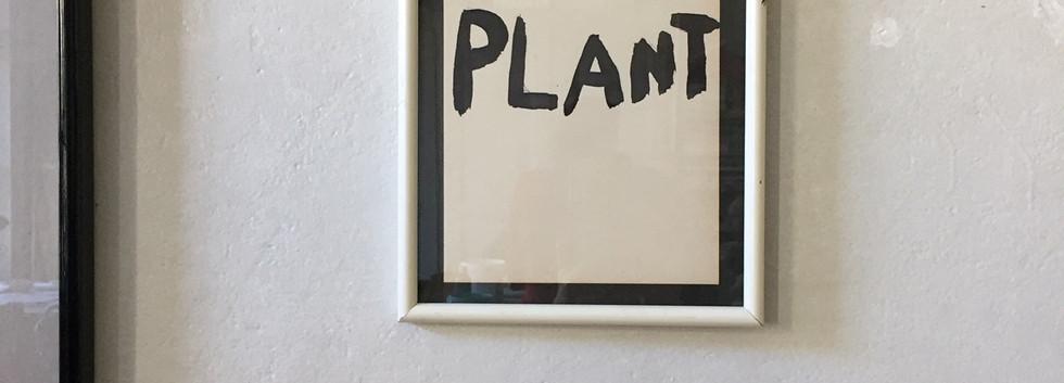 Ego plant, 2019