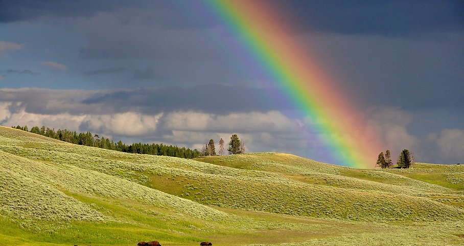 free lesson plan and resources about rainbows