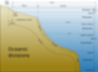 free lesson plan and resources about the ocean's layers